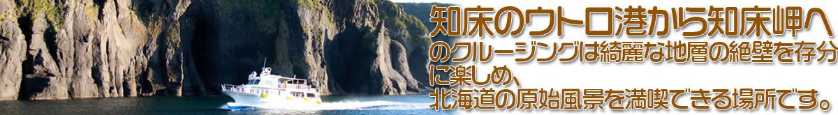 知床ウトロ港から知床岬までのクルージングは地層が綺麗な絶壁を存分に見ることが出来て、北海道における原始風景も満喫できます。